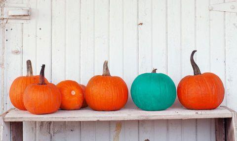 Wood, Squash, Calabaza, Orange, Vegetable, Local food, Produce, Vegan nutrition, Natural foods, Pumpkin,