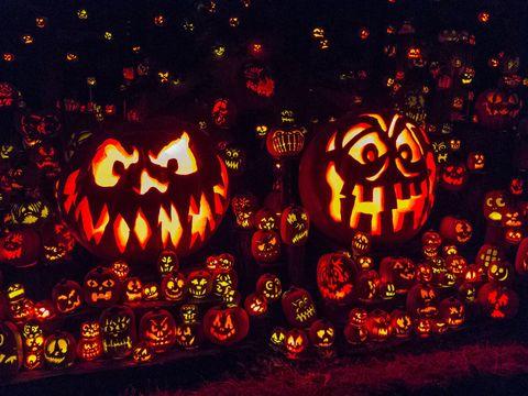 Calabaza, Vegetable, Orange, Squash, Jack-o'-lantern, Produce, Pumpkin, Winter squash, Holiday, Tradition,