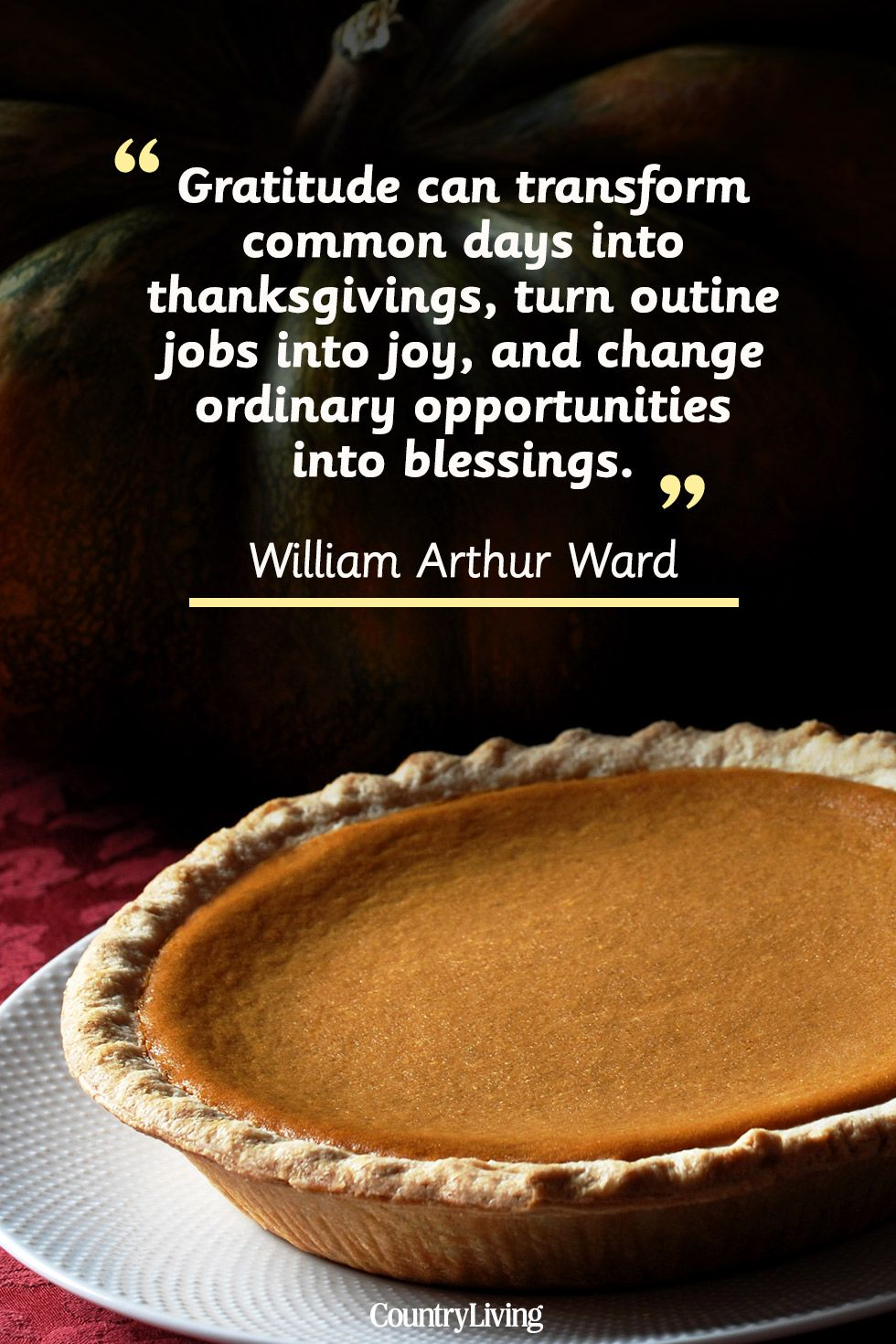 Thanksgiving Inspirational Quotes 25 Best Thanksgiving Day Quotes  Happy Thanksgiving Toast Ideas