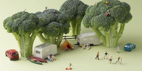 Toy, Scale model, Environmental art,