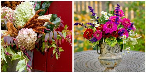 Petal, Flower, Flowerpot, Purple, Floristry, Cut flowers, Bouquet, Flower Arranging, Magenta, Floral design,