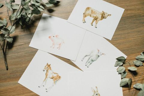 Vertebrate, Carnivore, Terrestrial animal, Natural material, Fawn, Canidae, Paper product, Illustration, Creative arts, Paper,