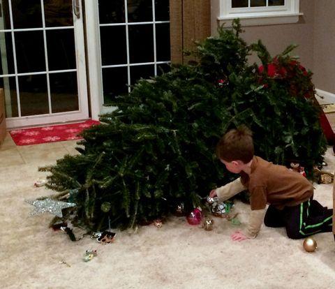 Christmas decoration, Holiday, House, Christmas tree, Fixture, Home, Christmas, Evergreen, Christmas eve, Interior design,