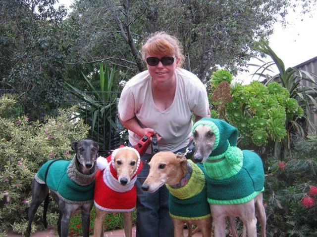 image  sc 1 st  Country Living Magazine & Sweaters For Homeless Greyhounds - Jan Brown Knitted With Love