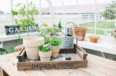Flowerpot, Ingredient, Interior design, Herb, Pottery, Houseplant, Ceramic, Daylighting, earthenware, Plywood,