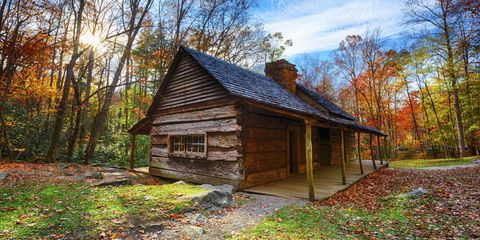 Wood, Deciduous, Leaf, Landscape, Natural landscape, Tree, Rural area, Autumn, House, Woody plant,