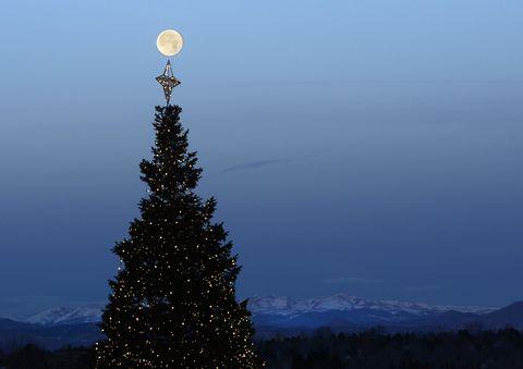 Full moon next to a Christmas tree