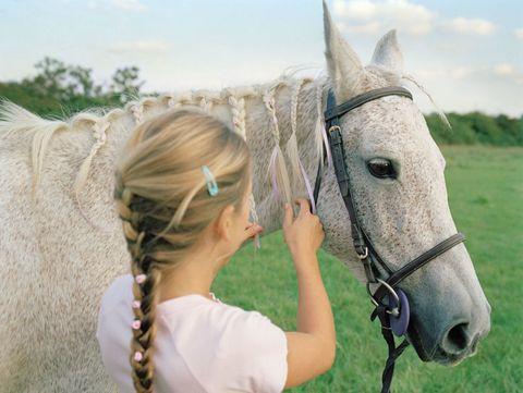 Human, Bridle, Horse supplies, Halter, Horse, Mammal, Working animal, Horse tack, Jaw, Organ,