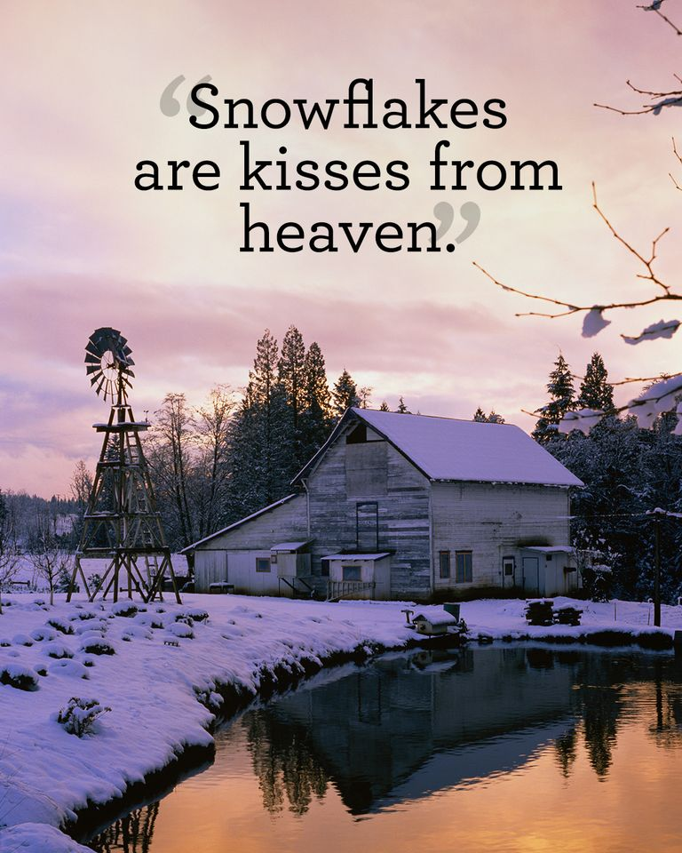 Snow Quotes And Sayings: Snow Quotes You'll Love