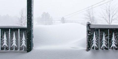 Winter, Branch, Freezing, Atmospheric phenomenon, Snow, Blizzard, Ice, Winter storm, Slope, Precipitation,