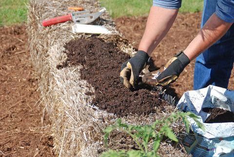 Soil, Denim, Agriculture, Compost, Gardening, Groundcover, Shrub, Straw, Tool, Garden tool,