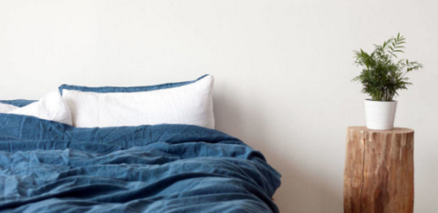 Blue, Flowerpot, Wood, Property, Textile, Bedding, Photograph, Room, Wall, Bedroom,