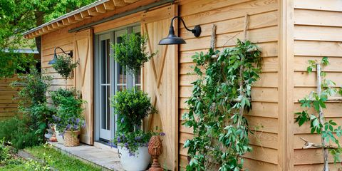 Wood, Plant, Property, House, Real estate, Shrub, Fixture, Groundcover, Rural area, Door,
