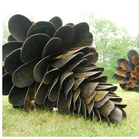 Large Giant Natural Pine Cone