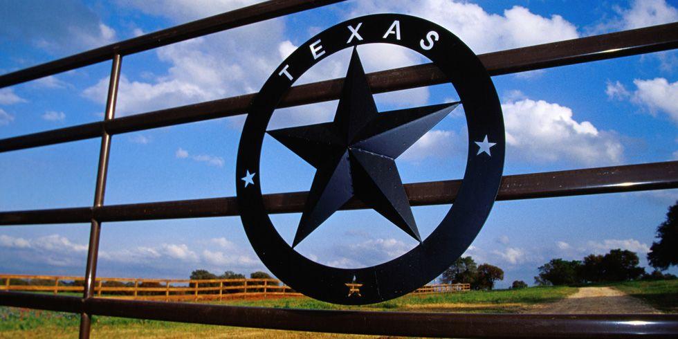 Dumb Laws In Texas >> Weirdest Laws In Texas Dumb Laws In Texas