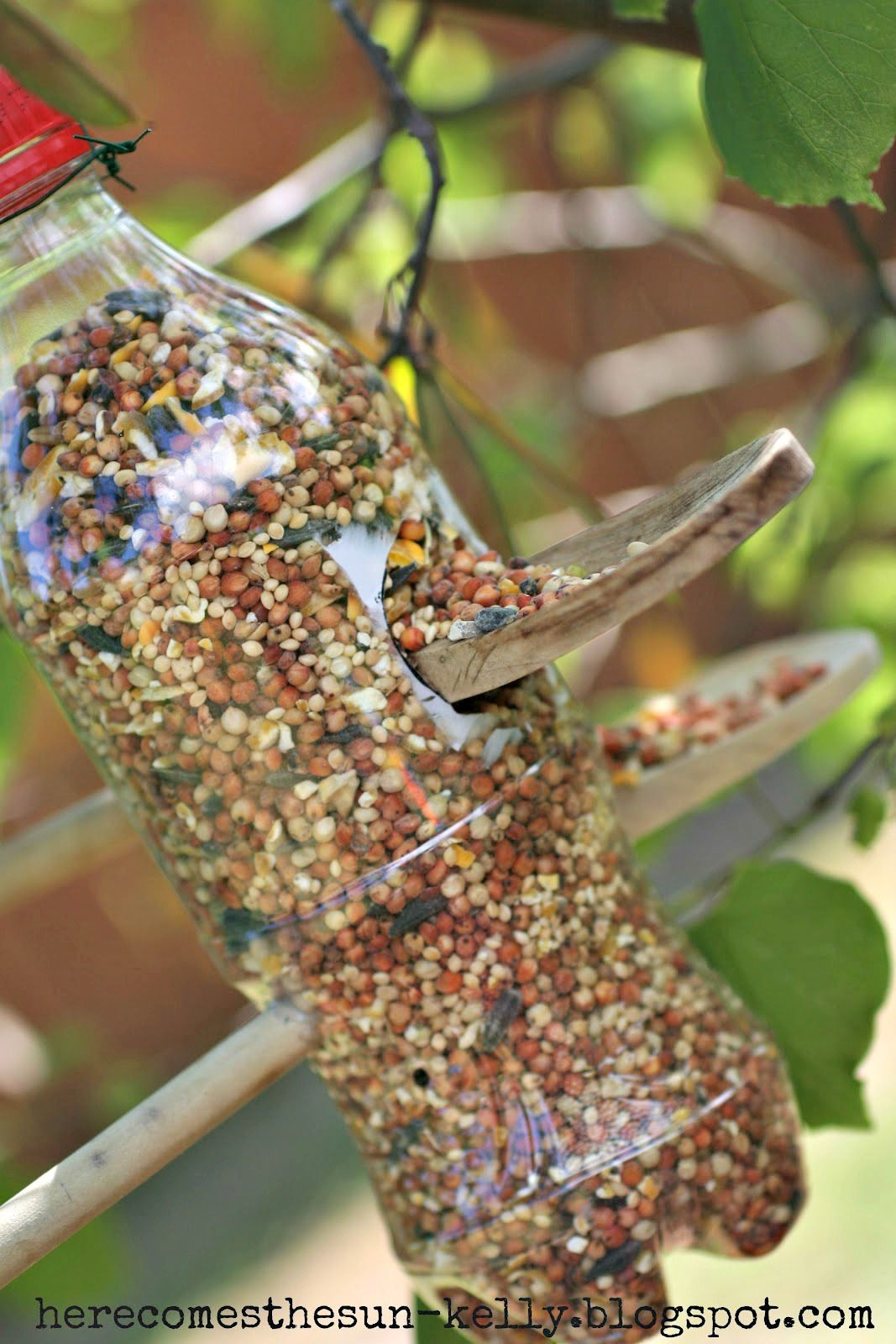 10 DIY Bird Feeders That Will Fill Your Garden with Songbirds - Bird ...