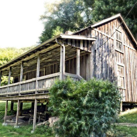 Shack, House, Log cabin, Building, Cottage, Hut, Rural area, Tree, Home, Plantation,