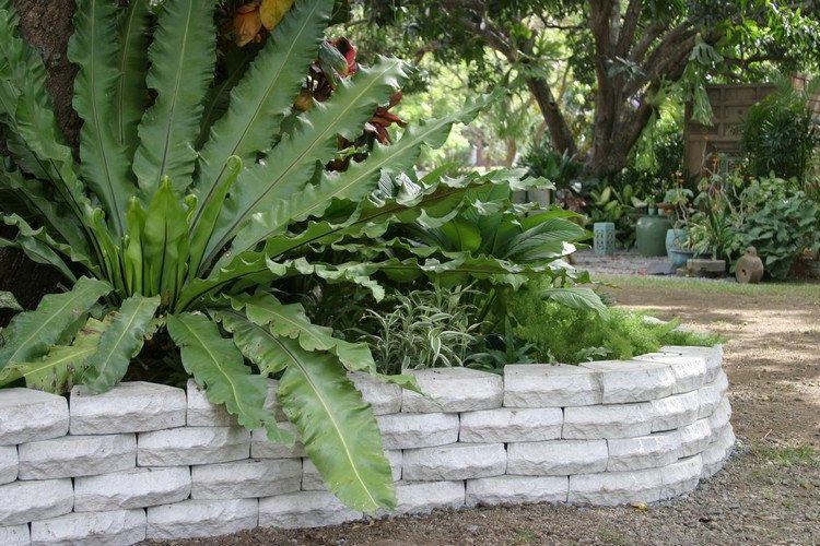 14 Cheap Landscaping Ideas - Budget-Friendly Landscape Tips for Front Yard and Backyard