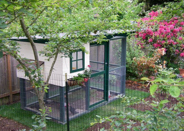 Backyard Chicken Coup 24 diy chicken coops you need in your backyard - diy chicken coop plans