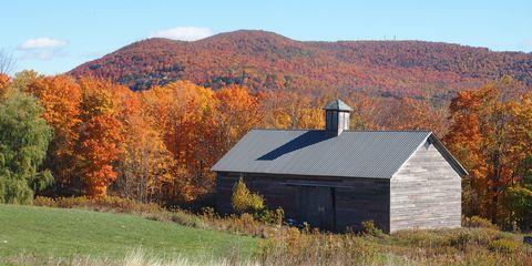 Mountainous landforms, Highland, Leaf, Natural landscape, Hill, Landscape, House, Land lot, Rural area, Mountain,