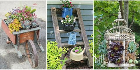 Flowerpot, Plant, Flower, Purple, Petal, Interior design, Houseplant, Garden, Lavender, Cage,