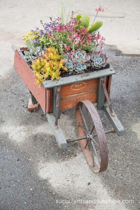 Flower, Flowerpot, Cart, Annual plant, Concrete, Herbaceous plant, Flower Arranging, Houseplant, Floral design, Herb,