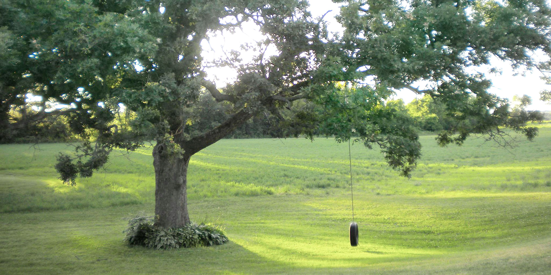Ideas For Outdoor Summertime Fun Easy Diy Tire Swing