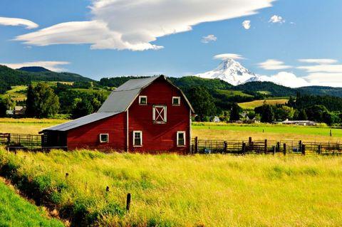 Natural landscape, Sky, Farm, Barn, Grassland, Rural area, Grass, Highland, House, Pasture,