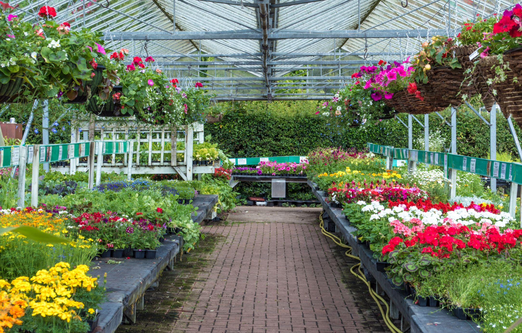 The 10 Most Toxic Items at the Garden Center