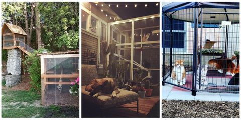 14 Amazing Catios You Have to See - Catio Ideas, DIYs, and