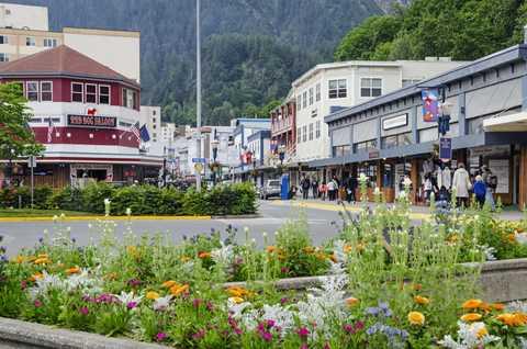 Plant, Window, Flower, Town, Garden, Shrub, Mountain range, Hill station, Residential area, Groundcover,
