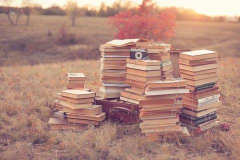 Wood, Hardwood, Lumber, Prairie, Autumn,