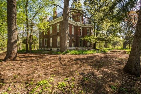 Tree, House, Woody plant, Real estate, Trunk, Home, Manor house, Mansion, Villa, Estate,
