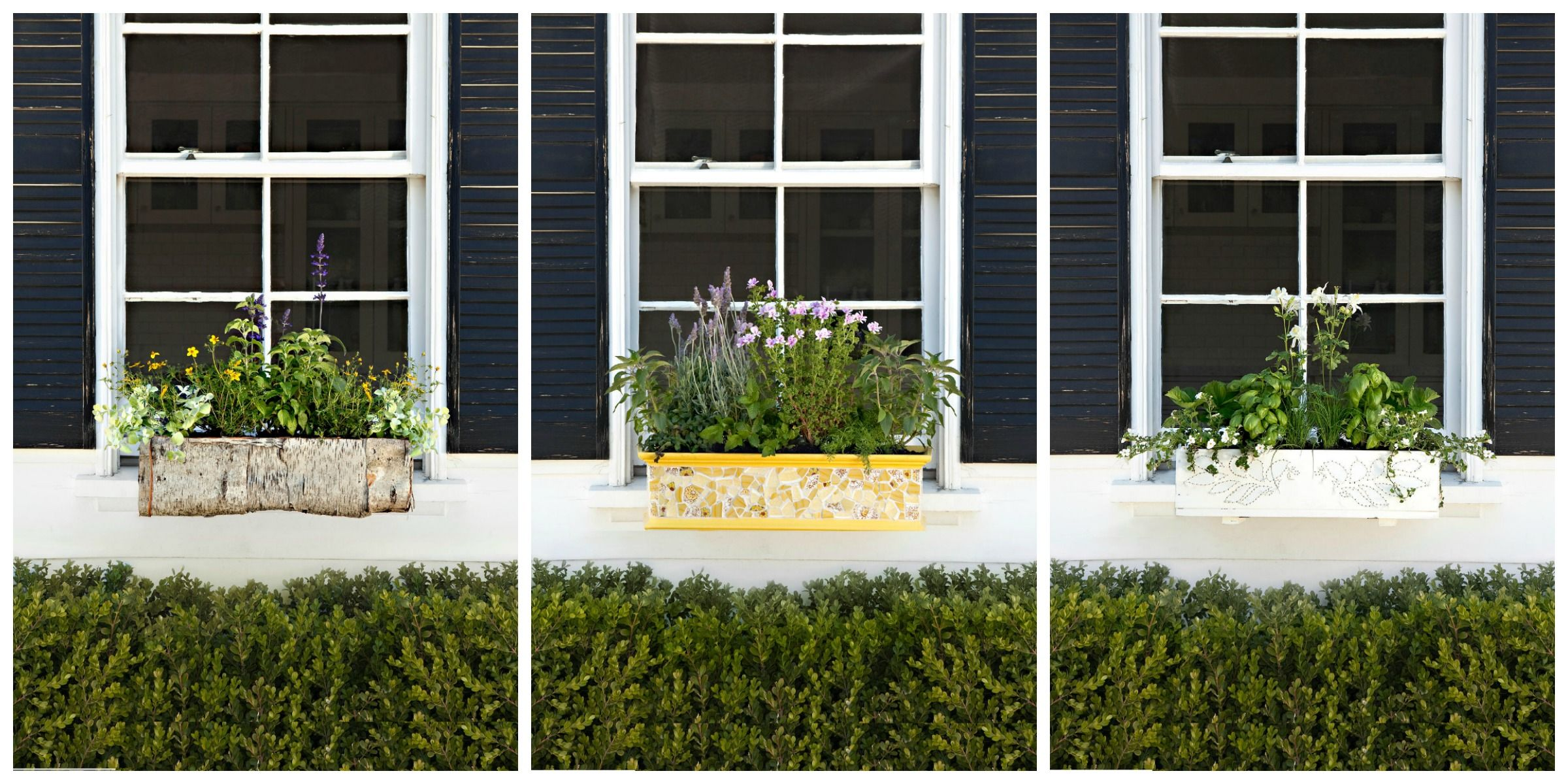 18 Fun Gardening Ideas For Your Window Boxes - Window Box Flowers ...