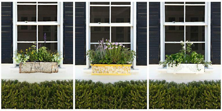 18 fun gardening ideas for your window boxes window box flowers karyn millet workwithnaturefo