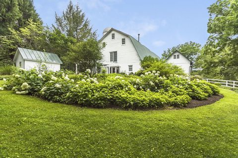 Grass, Plant, Shrub, Window, Property, House, Garden, Land lot, Real estate, Home,
