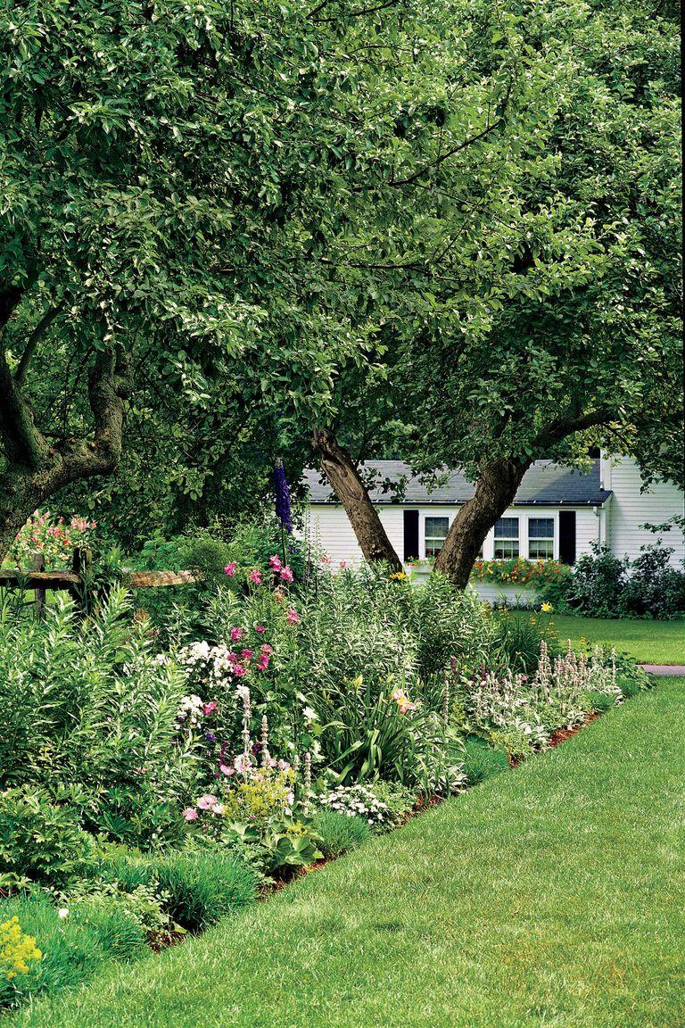 front garden screening ideas