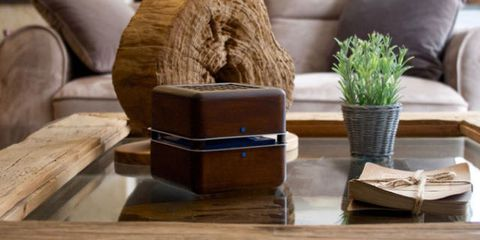 Brown, Flowerpot, Couch, Tan, Hardwood, Houseplant, Club chair, Living room, Baggage, Wood stain,