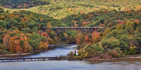 Nature, Vegetation, Natural landscape, Bridge, Mountainous landforms, Water resources, Leaf, Landscape, Bank, Highland,