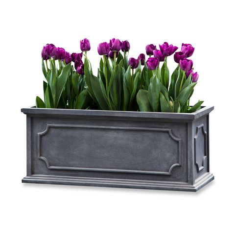 Campania Large Hampshire Window Box