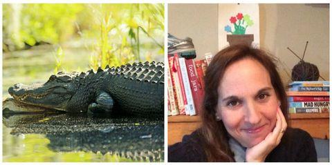 Alligator, Crocodilia, Eyebrow, Crocodile, Reptile, Facial expression, Jaw, Adaptation, Iris, Terrestrial animal,