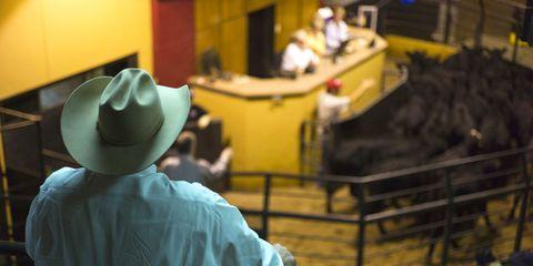 Yellow, Hat, Headgear, Costume accessory, Sun hat, Costume hat, Fedora, Cowboy hat,