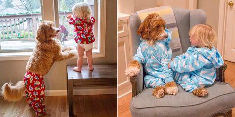 Human, Human body, Mammal, Comfort, Child, Home, Fur, Toddler, Baby & toddler clothing, Toy,