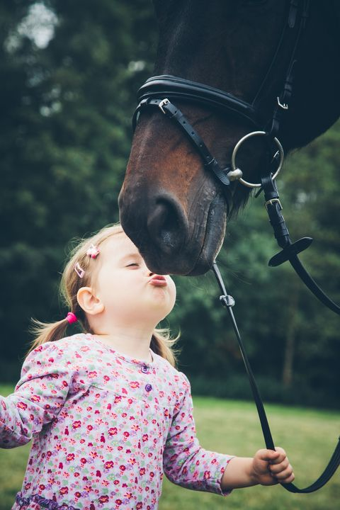 Human, Bridle, Halter, Horse supplies, Horse, Horse tack, Child, People in nature, Summer, Baby & toddler clothing,