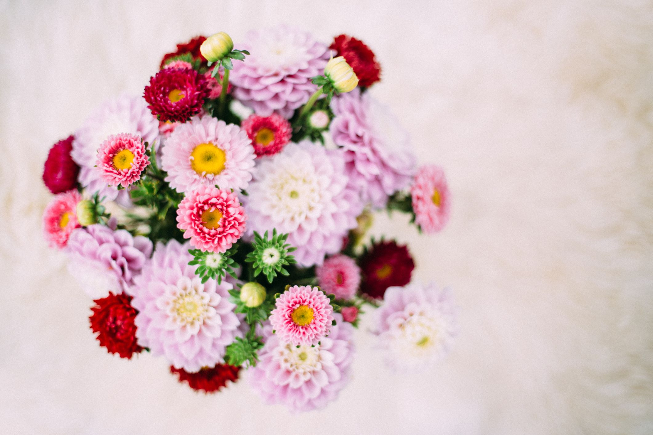 How to arrange flowers arranging flowers izmirmasajfo Image collections