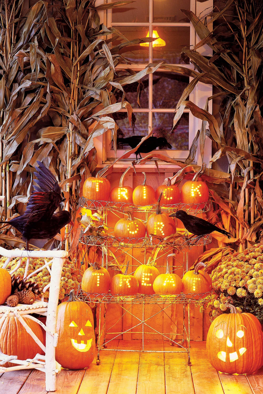 pumpkin greeting display