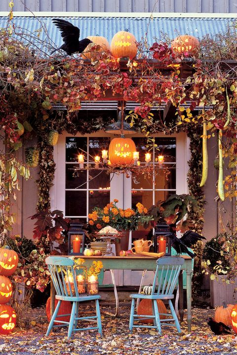 halloween wonderland party decor