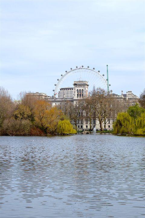 prettiest places in london: st. james's park