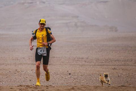 Human, Endurance sports, Mammal, Running, Quadrathlon, Outdoor recreation, Exercise, Cross country running, Long-distance running, Active shorts,