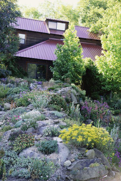 Garden, Vegetation, Natural landscape, Botanical garden, House, Botany, Plant, Tree, Flower, Groundcover,